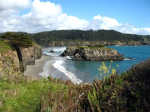 photo from destinationmendocino.com
